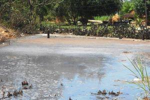 Chấm dứt sản xuất tinh bột mì trong khu dân cư tại huyện Tây Sơn