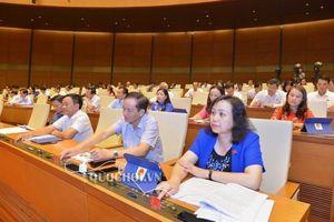 Quốc hội thông qua Luật Kinh doanh bảo hiểm và Sở hữu trí tuệ