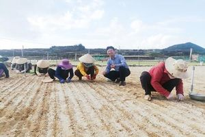 Nano: Hướng đi phát triển bền vững của doanh nghiệp nông nghiệp, nuôi trồng thủy sản