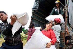 5 tháng đầu năm, cả nước có 63,2 nghìn lượt hộ thiếu đói, giảm 30,5%