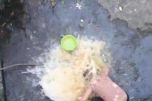 Ăn mừng kênh Youtube đạt 20k sub, con trai đổ nguyên thau trứng lên đầu mẹ rồi quay clip khoe 'chiến tích' khiến nhiều người phẫn nộ