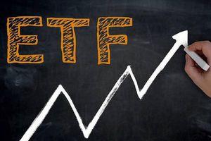 VNM ETF thêm POW, loại DPM và STB khỏi danh mục