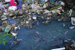 Làm sạch sông Tô Lịch: Khi ô nhiễm đang được xử lý ở 'ngọn'