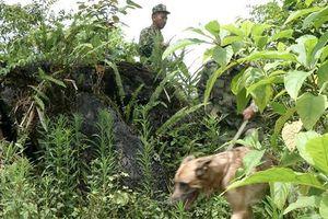 Tìm thấy thi thể cán bộ kiểm lâm sau 5 ngày mất tích trong rừng