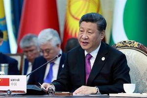 Phá trừng phạt Mỹ, Trung Quốc bước đi ráo riết ở SCO