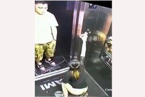 Hành động gây sốc của cô gái trong thang máy