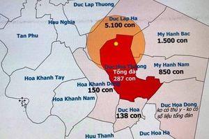 Long An: Phát hiện ổ dịch tả lợn châu Phi tại huyện Đức Hòa