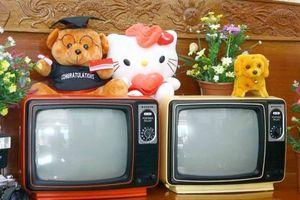 Hoài niệm về 'thời huy hoàng' của tivi đen trắng
