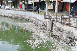 Nguyên nhân cá chết hàng loạt tại 2 hồ điều tiết ở TP. Đà Nẵng
