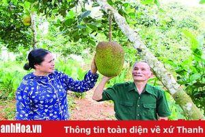 Hội Nông dân huyện Ngọc Lặc nhiều hoạt động giúp hội viên phát triển kinh tế, xóa đói, giảm nghèo
