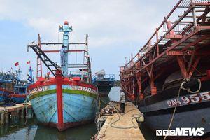Ngư dân kiên cường bám biển bất chấp lệnh cấm phi pháp của Trung Quốc
