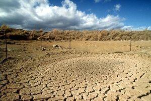 Việt Nam có 1,3 triệu héc-ta đất bị suy thoái