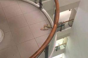 Cụ ông nhảy từ tầng 10, thoát chết hy hữu nhờ tấm lưới sắt