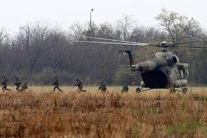 Liên quân Nga, Belarus, Serbia diễn tập trùng thời điểm NATO tập trận ở Baltic