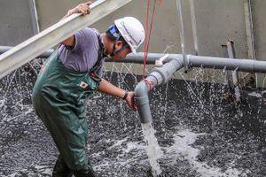 Bắt đầu xử lý bùn sông Tô Lịch thành khí CO2 bằng 'bảo bối' Nhật