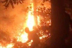 Nghệ An: Hàng trăm người dân trắng đêm dập lửa cứu rừng
