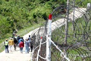 Đường mòn ở biên giới liên Triều sẽ thành nơi du lịch