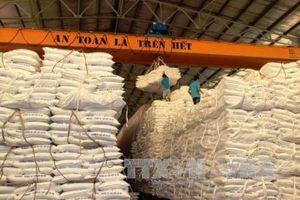 Thế giới có thể thiếu 2,5 triệu tấn đường trong niên vụ 2019 - 2020