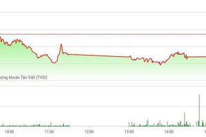 Chứng khoán chiều 17/6: Bộ ba cổ phiếu 'Vin' bốc hơi trên 11.800 tỷ