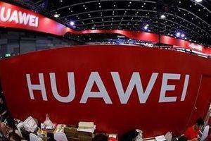 Doanh nghiệp Mỹ hối thúc chính quyền giảm lệnh cấm lên Huawei