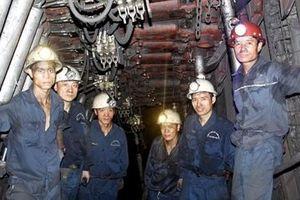 TKV phấn đấu cung cấp 2,6 triệu tấn than pha trộn cho EVN