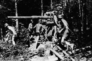 Tình cảnh thảm hại của quân đội phát xít Đức vào cuối Thế chiến 2