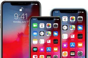 Thông tin mới nhất về iPhone 2020: Sẽ có điều chỉnh kích cỡ bản cao cấp