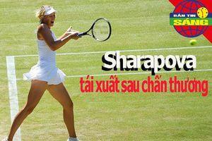 Sharapova tái xuất; Áo đấu đắt nhất thế giới giá 5,6 triệu USD
