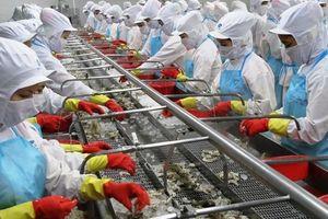 Một Cty thủy sản bị Mỹ cáo buộc trốn thuế chống bán phá giá tôm