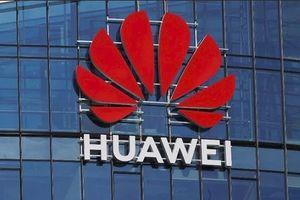 Huawei có thể thiệt hại 100 tỷ USD trong 2 năm