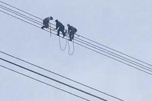 Hàng trăm người giải cứu thanh niên trèo lên đường điện 500kv ở Sơn La