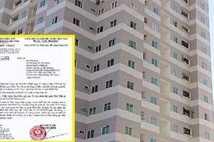 TP.HCM: Thanh tra toàn diện công tác quản lý, vận hành tại chung cư Tân Tạo 1