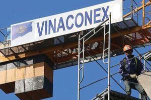 'Ông lớn' Vinaconex 21 và Constrexim IBC nợ thuế hàng chục tỷ đồng