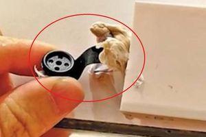 Phát hiện camera quay lén trong phòng thay đồ ở Trung Quốc