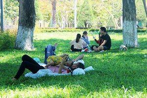 Bị cắt điện cả ngày, người dân phố biển Quy Nhơn tìm chỗ tránh nắng