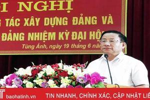 Tùng Ảnh tổng kết công tác xây dựng Đảng và thi hành Điều lệ Đảng