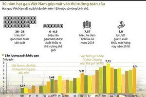 30 năm hạt gạo Việt Nam góp mặt vào thị trường toàn cầu