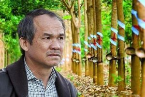Bầu Đức bán đứt công ty cao su cho Thaco