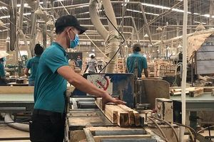 Điều tra bán phá giá ván gỗ công nghiệp: Bước tiến trong phòng vệ thương mại