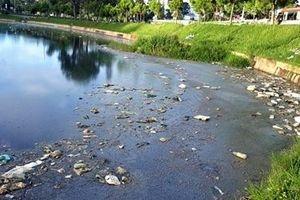 Nước hồ bốc mùi hôi thối khủng khiếp giữa trung tâm Đà Lạt