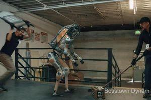 Boston Dynamics hành hạ robot