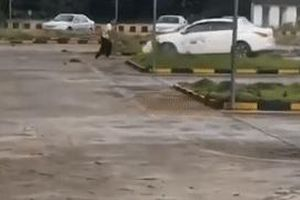 Học viên lái xe mất kiểm soát khiến ôtô quay vòng 2 phút