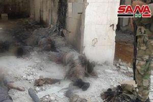 Bức ảnh gây 'sốc' trên chiến trường ác liệt Hama