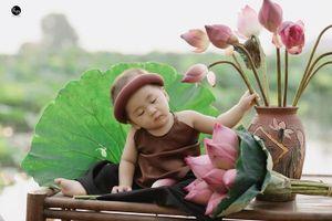 Ngủ gật bên hoa sen, bé trai 8 tháng tuổi khiến dân tình 'lịm tim' vì biểu cảm quá đáng yêu