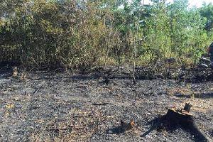 Đà Nẵng: Phát hiện thi thể cụ ông trong đám cháy cạnh vườn nhà