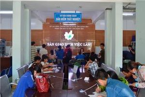 Quảng Bình: Giải quyết việc làm cho 18.300 lao động