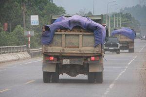 Lo tai nạn, Đà Nẵng đề nghị làm nhanh cầu vượt nút giao Hòa Liên