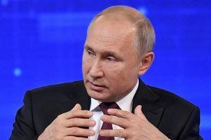 TT Putin bất ngờ cởi mở về vụ thả tự do cho cá voi sát thủ