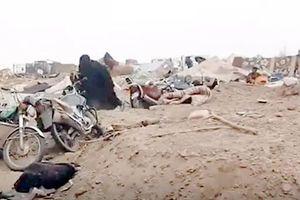 Con của các phiến quân IS: Những nạn nhân bị lãng quên (Kỳ 3: Lo lắng và đau thương)