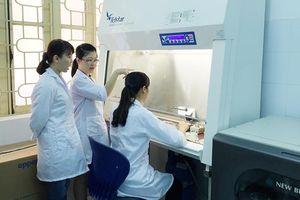 Sản xuất TPCN hỗ trợ giảm nguy cơ tai biến do tắc mạch hoàn toàn nguyên liệu trong nước